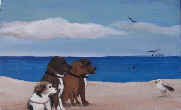 Dog Family Beach